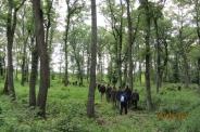 Sopronban járt a Zalaegerszegi HCs - 2013.05.24. - Fotók: Som László