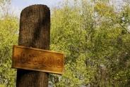 130 éves az ásotthalmi erdészeti szakiskola - jubileumi ünnepség - Ásotthalom - 2013.11.08. - Fotók:Nagy László