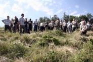 145. OEE Vándorgyűlés - Sopron - Erdőfelújítás szúkatasztrófa után - 2. szakmai program - Fotók: Mőcsényi Miklós/FATÁJ