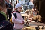 Erdészeti Erdei Iskola Minősítések átadása - Erdők Nemzetközi Napja 2015 - Budakeszi Vadaspark - Fotók:Nagy László/Erdészeti Lapok