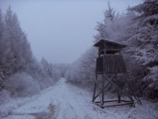 Szilveszteri tél 2008 12 31 Foto: Ormos Balázs