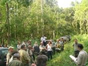 Erdőgazdálkodás Természetvédelmi területen Foto: Csór Attila
