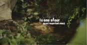 Erdő és víz - FAO kisfilm az Erdők Nemzetközi Napja alkalmából - 2016 - Magyar változat - Forrás:Hazai Vadász